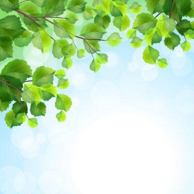 Fototapete Grüne Blätter Äste Vektor-Hintergrund