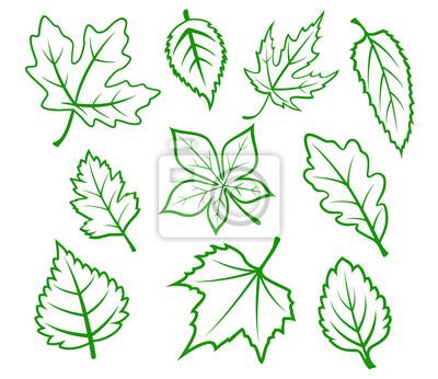 Grüne Blätter eingestellt