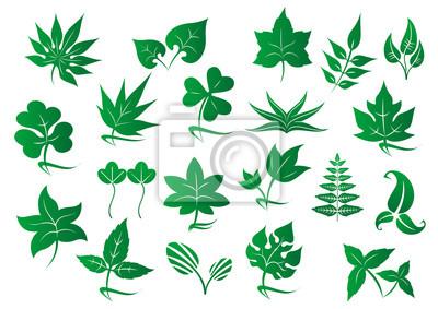 Grüne Blätter und Pflanzen gesetzt
