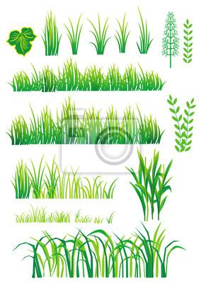 Grüne Elemente für das Design