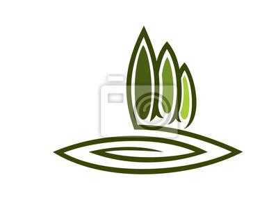 Grüne Öko-Symbol mit hohen Zypressen
