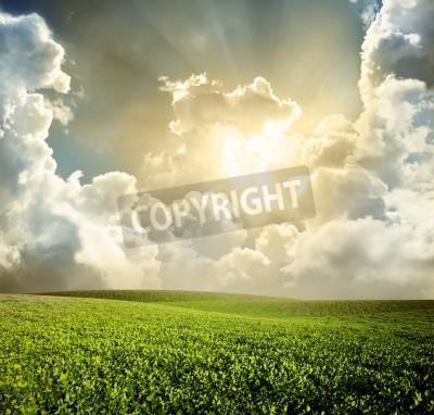 Fototapete Grüne Wiese unter blauem Himmel mit Wolken