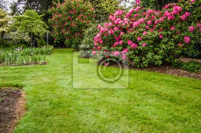 Grüner Rasen Und Sträucher In Einem Garten Fototapete Fototapeten