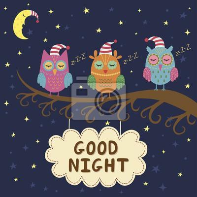 Gute Nachtkarte mit niedlichen schlafenden Eulen. Abbildung