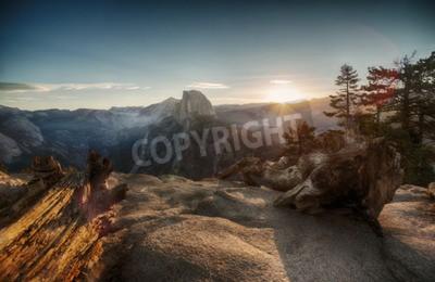 Fototapete Halbe Kuppel und Yosemite-Tal im Yosemite-Nationalpark bei bunten Sonnenuntergang und alten Baumstämmen