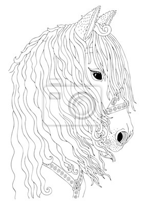 Fototapete: Hand drawn horse head. sketch for anti-stress adult coloring