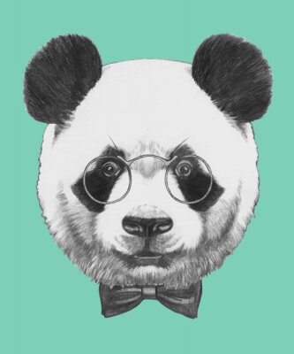 Fototapete Hand drawn portrait of Panda with glasses and bow tie. Vector isolated elements.