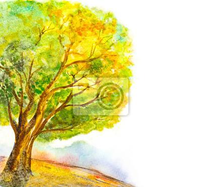 Hand Gemalt Aquarell Baum Natur Hintergrund Fototapete