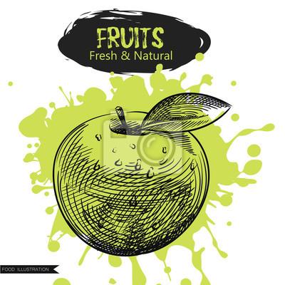 Fototapete Hand Gezeichnet Apfel Auf Grünem Blot Isoliert. Früchte  Skizzelemente. Kunst Von Hand Gezeichnete