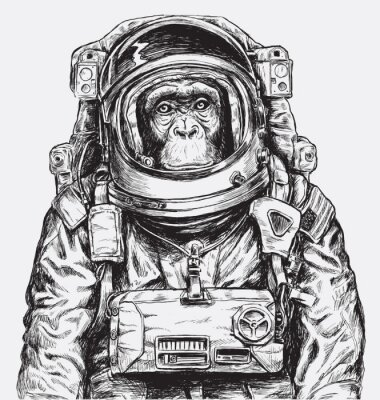 Fototapete Hand gezeichneter Affe Astronaut Vektor