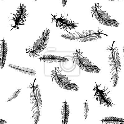 Hand Zeichnen Nahtlose Muster Von Schwarz Weiß Federn Fototapete