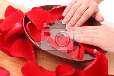Hände mit Französisch Maniküre entspannen in Schüssel mit Wasser mit Rose