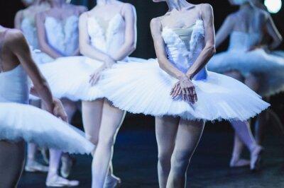 Fototapete Hände von Ballerinen. Hände von Ballerinen. Ballettaussage. Große Ballerinen. Ballerinas in der Bewegung.