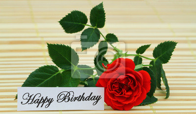 Fototapete Happy Birthday Card With Red Wild Rose