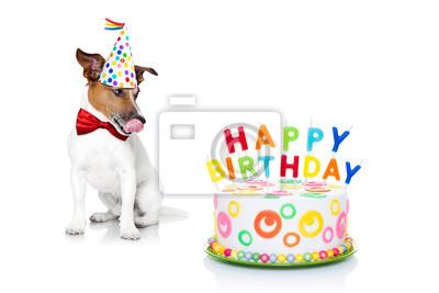 Happy Birthday Dog Fototapete O Fototapeten Platzhalter Witzig