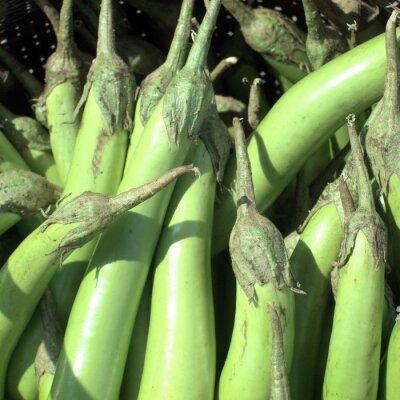 Hausgemachte Gemüse