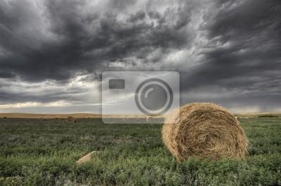 Fototapete Hay Bale und Grasland-Sturm