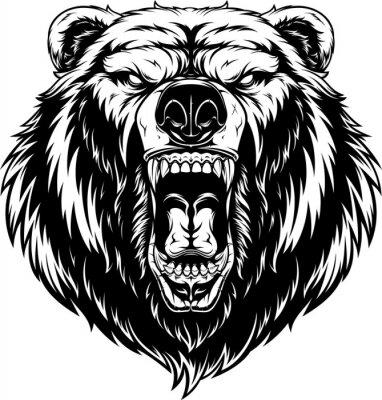 Fototapete Head of a ferocious bear