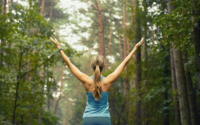 Fototapete healthy lifestyle fitness sporty woman early in forest area