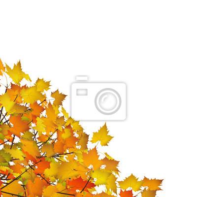 Herbst Blätter Ecke Dekoration Vorlage Herbstblätter Gelb