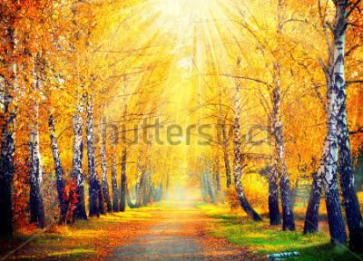 Fototapete Herbst. Fallen. Herbstlicher Park. Autumn Trees und Blätter in Sonnenstrahlen. Schöne Herbstszene