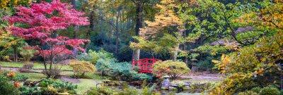 Fototapete Herbst im japanischen Park, Panorama