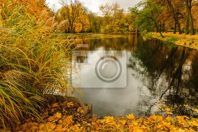 Herbst Im Königlichen Lazienki Park In Warschau Fototapete