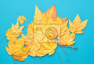 Wunderbar Fototapete Herbst Mode Herbst Blätter Hintergrund. Jahrgang. Entwurf. Gelb  Fallen Blätter Auf Blau