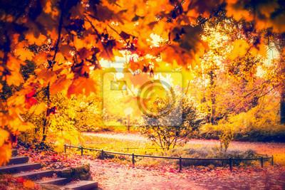Herbst Park Mit Gold Laub Verschwommen Herbst Hintergrund