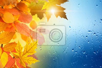 Herbst Saison Hintergrund