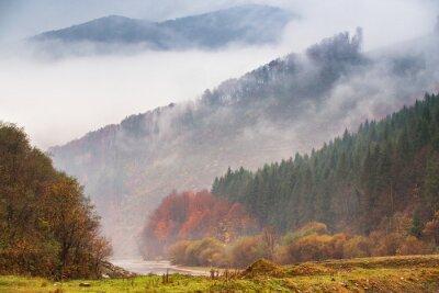 Fototapete Herbstregen und -nebel in den Bergen. Bunter Herbstwaldhintergrund