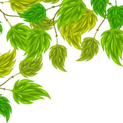 Fototapete Hintergrund der stilisierten grünen Blätter für Grußkarten
