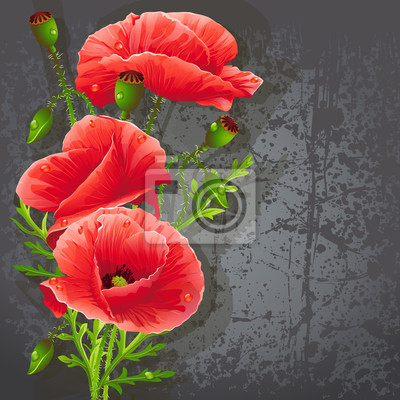Hintergrund für Ihren Text mit roten Mohnblumen.