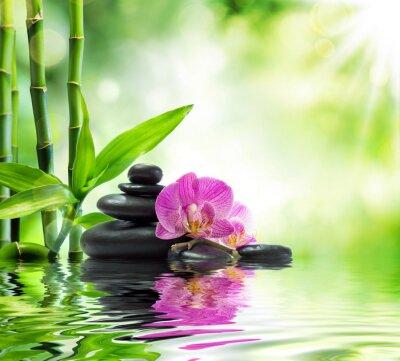Hintergrund Spa Orchideen Schwarzen Steinen Und Bambus Auf