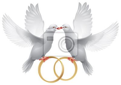 Hochzeit Weisse Tauben Mit Ringen Fototapete Fototapeten Heiraten