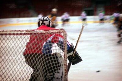 Fototapete Hockey-Torwart