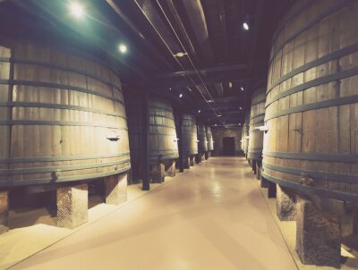 Fototapete Holzfässer im alten Keller