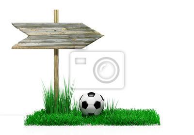 Holzschild mit Fußball und Gras, isoliert auf weiß