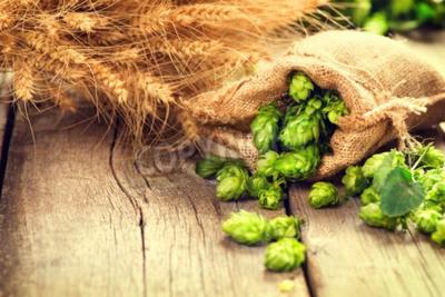 Fototapete Hop in Bag und Weizen Ohren auf hölzernen geknackt alten Tisch. Bier Brauerei Konzept. Zutat für Bier brauen. Beauty frisch gepflückten Hopfenzapfen und Weizen closeup. Sack Hopfen und Weizenbock auf