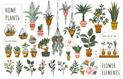 Fototapete Houseplants flowerpots isolated icons vector illustration. Decorative home plants, botanical icons and stickers. Flower pots and kitchen herbs, hanging plants, floral decorations collection.
