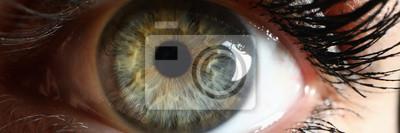 Fototapete Human green eye supermacro closeup background. Check vision concept