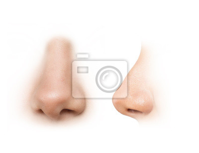 Fototapete human nose reference images