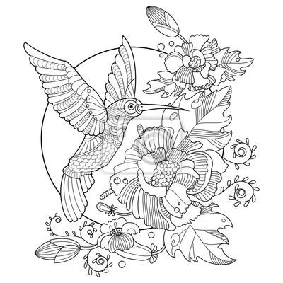 Hummingbird ausmalbilder für erwachsene vektor fototapete