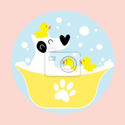 Hund baden mit Gummi-Ente