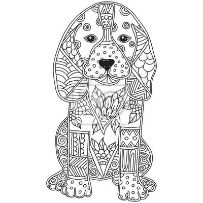 Hund Erwachsenen Antistress Oder Kinder Malvorlage Seite Fototapete