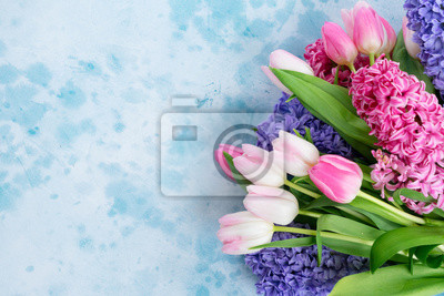 Fototapete Hyacinth blue and pink flowers on blue background with copy space