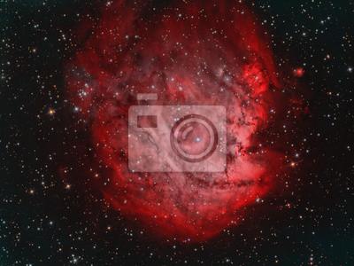IC2159 Monkey Head Nebula