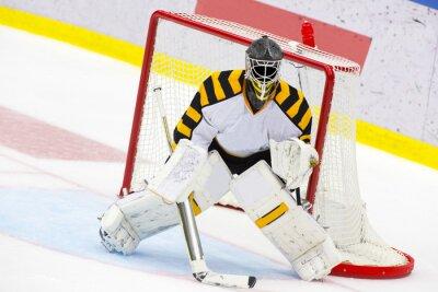 Fototapete Ice Hockey Goalie