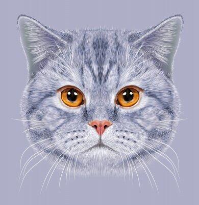 Fototapete Illustration der britischen Kurzhaar Kurzhaar Cat. Cute grau tabby Hauskatze mit orange Augen.