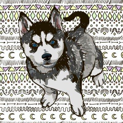Fototapete Illustration der Hunderasse Husky
